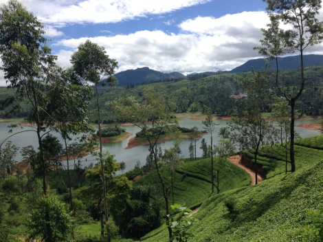 SriLanka093